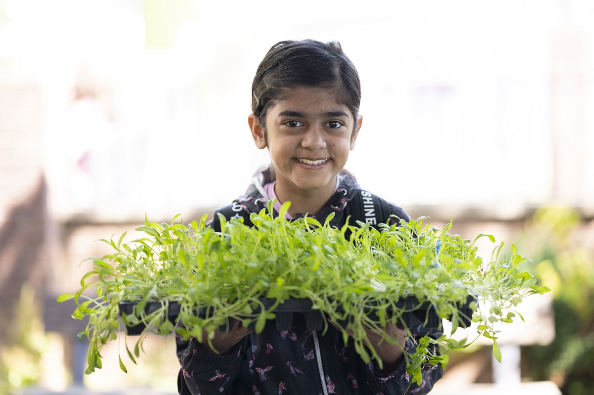Child holding seedlings and smiling